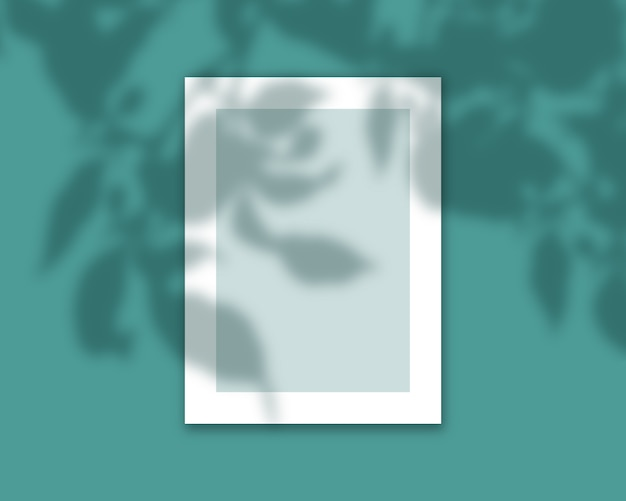 Cornice 3d con sovrapposizione di ombre