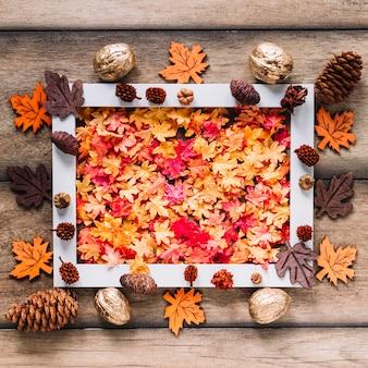 Cornice autunnale con foglie colorate di quercia