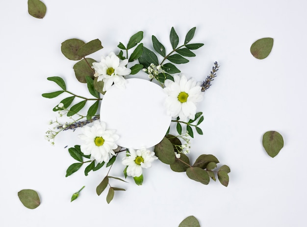 Cornice bianca circolare su margherita bianca e fiori del respiro del bambino