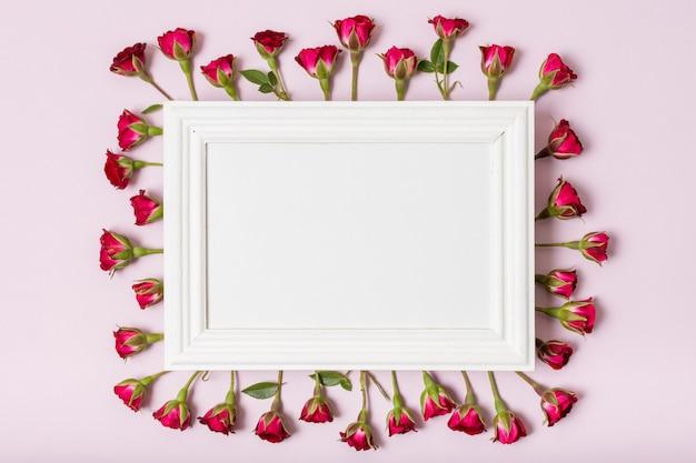 Cornice bianca circondata da rose rosse