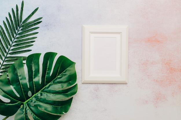 Cornice bianca con foglie tropicali
