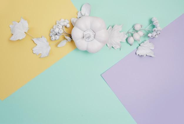 Cornice bianca con zucca, bacche e foglie su un pastello multicolore