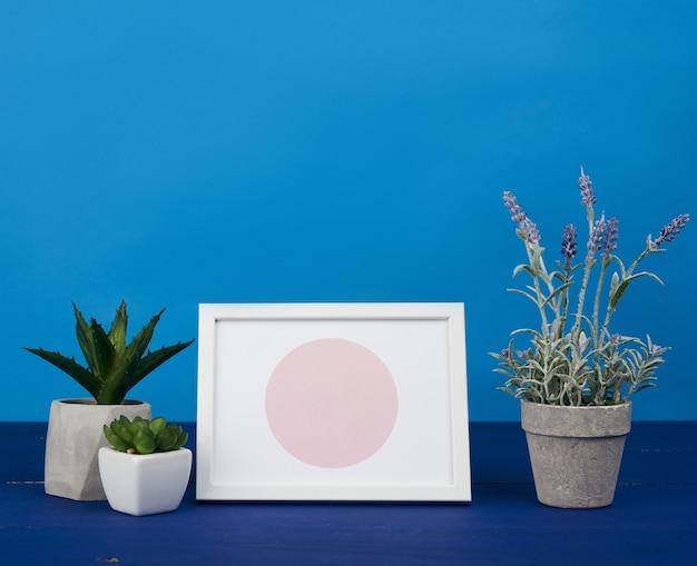 Cornice bianca e vaso in ceramica con una pianta in crescita su un tavolo di legno blu