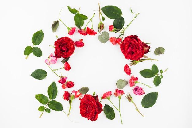 Cornice circolare fatta con rose rosse e foglie su sfondo bianco