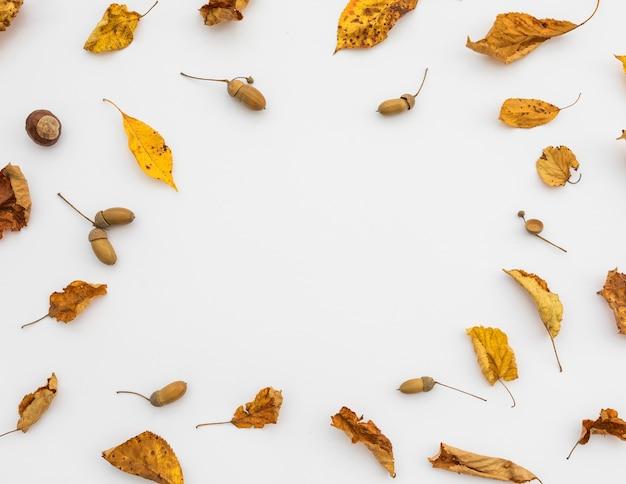 Cornice circolare vista dall'alto con foglie e copia-spazio