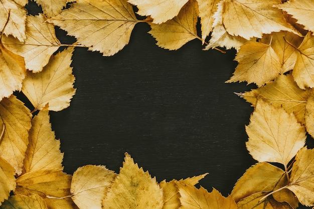 Cornice composta da foglie autunnali gialle sul nero