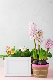 Cornice con vaso di fiori di giacinto