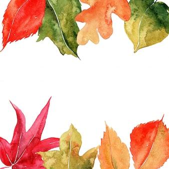 Cornice dell'acquerello con foglie.
