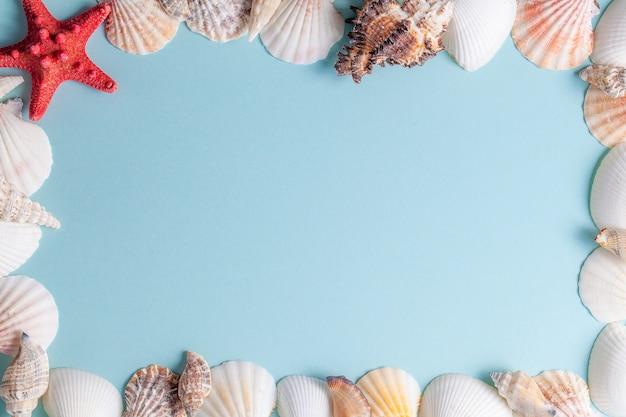 Cornice di conchiglie e stelle marine su sfondo blu