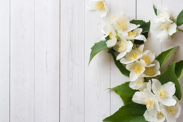 Cornice di fiori di gelsomino