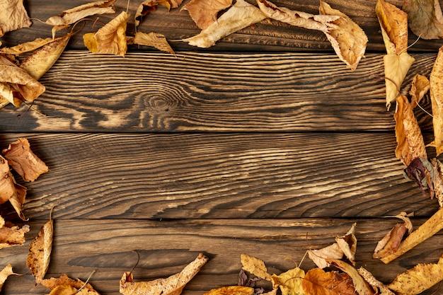 Cornice di foglie con spazio di copia