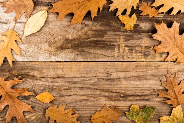 Cornice di foglie su fondo in legno