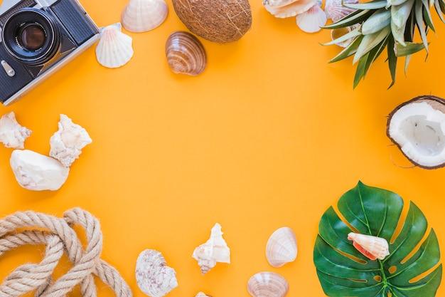 Cornice di fotocamera, conchiglie e frutta
