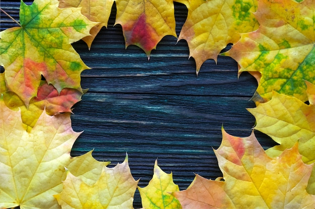 Cornice di giallo, autunno, foglie di acero su uno sfondo di legno. vista dall'alto. modello per pubblicità, vendita stagionale.