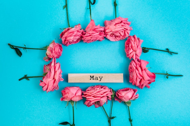 Cornice di rose fresche con maggio testo su sfondo colorato