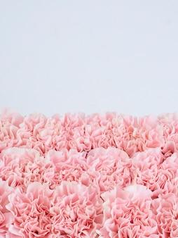 Cornice floreale fatta di garofani rosa