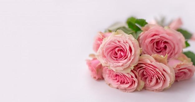 Cornice floreale scheda delicata con rose rosa su sfondo bianco. spazio per il testo.