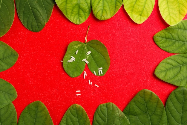 Cornice happy dussehra con foglia verde e riso