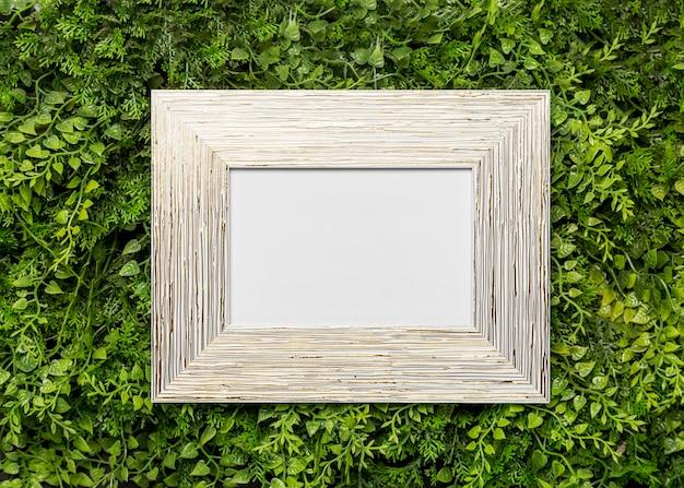 Cornice in legno su fogliame verde