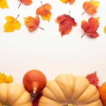 Cornice piatta con grandi zucche e foglie
