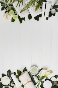 Cornice piatta con piante e copia-spazio