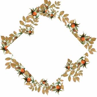 Cornice quadrata dell'acquerello di foglie gialle e rosa canina, radica.