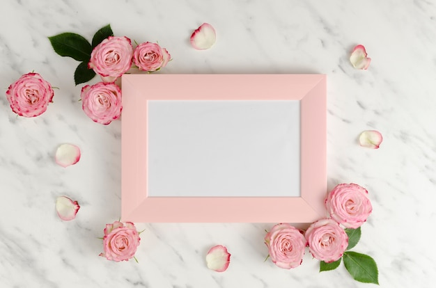 Cornice rosa con rose eleganti