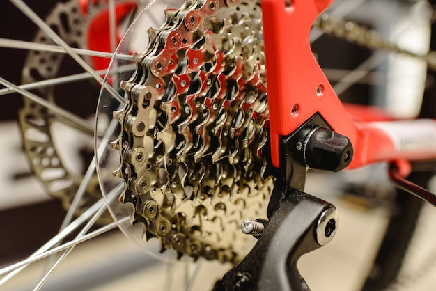 Corona dentata di una bicicletta pulita.