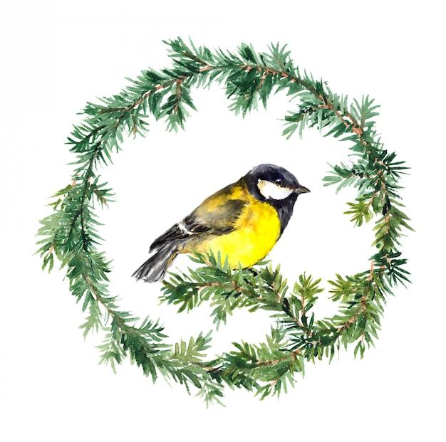 Corona di nuovo anno - abete rosso e uccello tit. acquerello