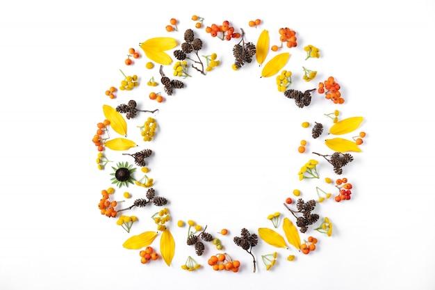 Corona fatta di foglie, coni e sorbo su sfondo bianco.