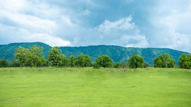 Cortile verde con montagna e cielo blu