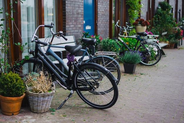 Cortili accoglienti di amsterdam, panchine, biciclette, fiori in vasche.