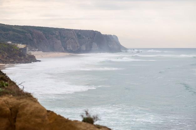 Costa con pietre, piante e surf in giornata nuvolosa