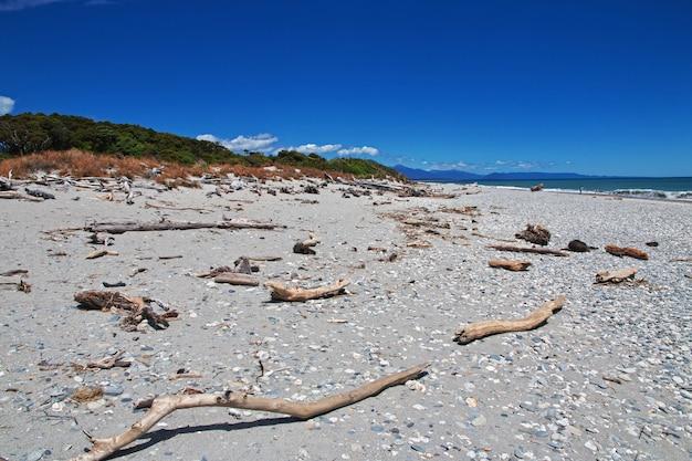 Costa ovest dell'isola del sud, nuova zelanda