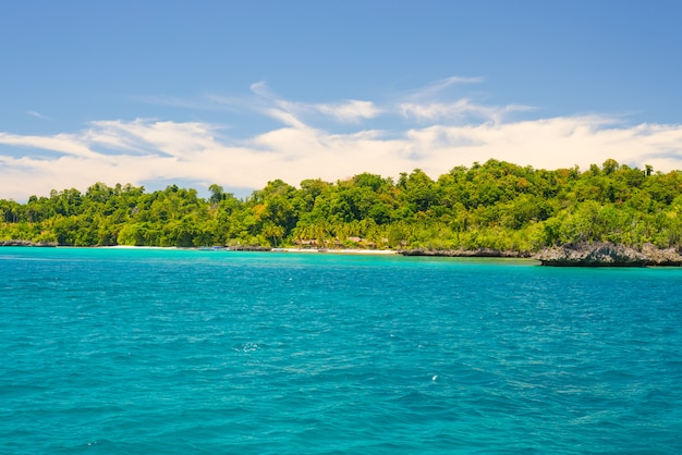 Costa rocciosa coperta da una fitta e lussureggiante giungla verde nel colorato mare delle remote isole togean
