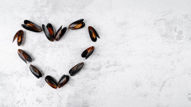 Cozze nello spazio della copia di forma del cuore