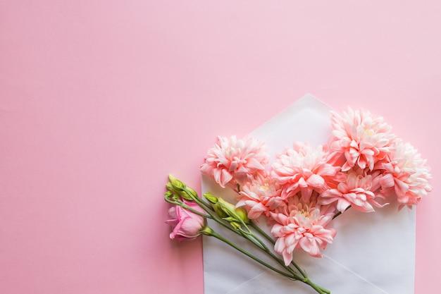 Crisantemi rosa in una busta. messaggio per te. buona festa della mamma. muro di fiori biglietto per la festa della mamma.