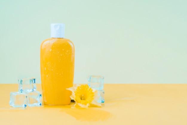 Cubetti di ghiaccio di cristallo con il fiore del narciso e la bottiglia gialla della lozione della protezione solare contro il contesto verde