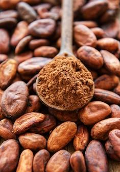 Cucchiaio di legno con polvere di cacao
