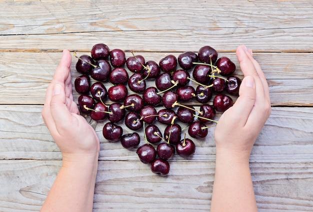 Cuore di ciliegie fresche e mature in mani femminili a coppa