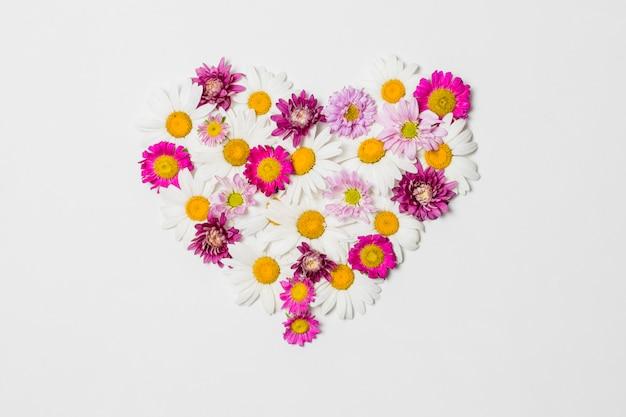 Cuore ornamentale di fiori luminosi