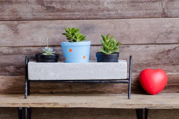 Cuore rosso del biglietto di s. valentino decorato con i vasi del cactus su fondo rustico di legno