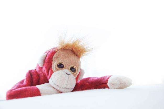 Cute scimmia recitazione hug bedding per scattare una foto