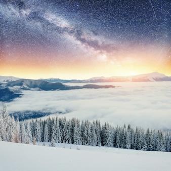 Dairy star trek nei boschi invernali.