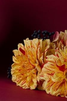 Dalie gialle luminose su un taccuino contro fondo porpora scuro. autunno, autunno romantico concetto.