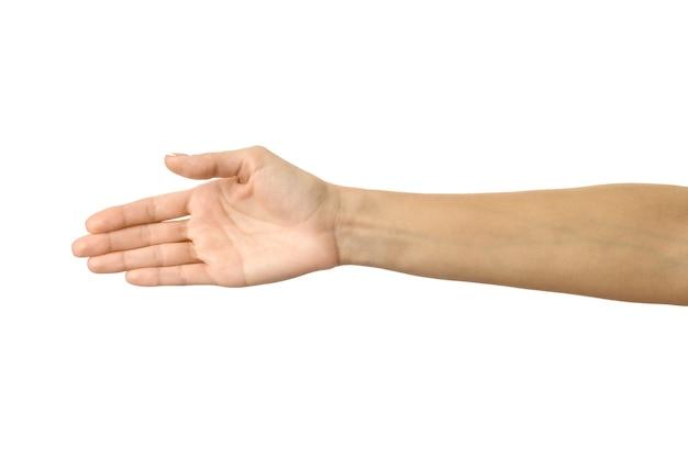 Dando la mano per la stretta di mano isolata su bianco