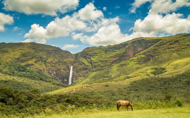 Dante di cadute del parco nazionale del brasile di canastra di serra da