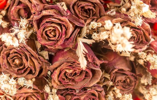 Decorazione astratta offuscata e retrò di fiori secchi. rose
