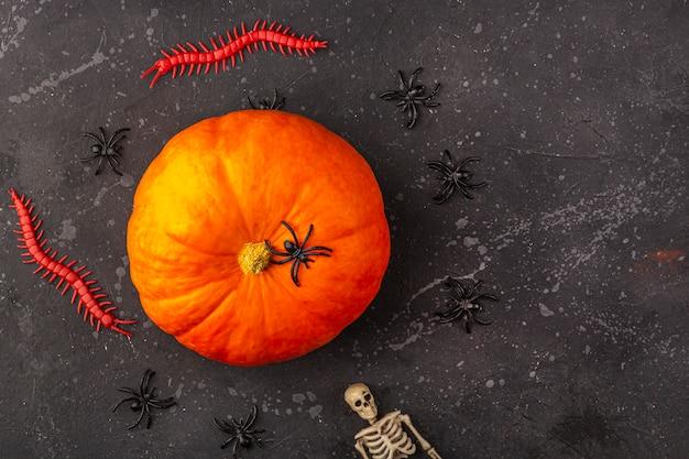 Decorazione di halloween: zucca, scheletro, ragni, vermi su un bacground scuro