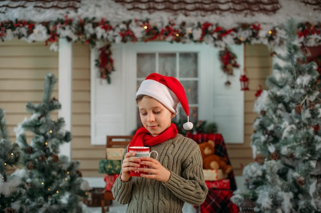 Decorazioni natalizie a casa